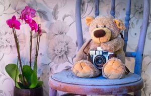 teddy-bear-1710641_1280